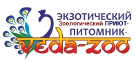 gallery/1зоо veda-zoo